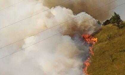 Le immagini dell'incendio fra Ponte Nossa e Premolo, in azione i Vigili del Fuoco