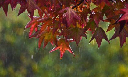 10 frasi in bergamasco sulle piogge autunnali